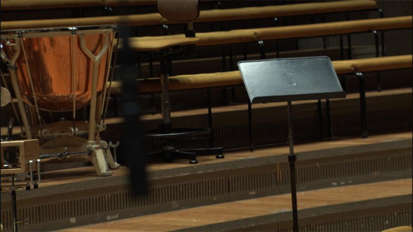 Lynne Marsh The Philharmonie Project-Nielsen 12